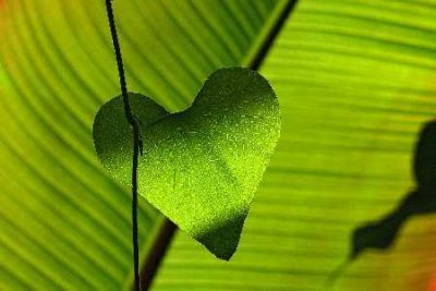 Simpele stappen voor een gezonder hart